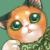 三毛猫・みーけ(ニャーロック・b23982)