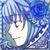 奇跡を願う雪の青薔薇・クーネラリア(c14529)